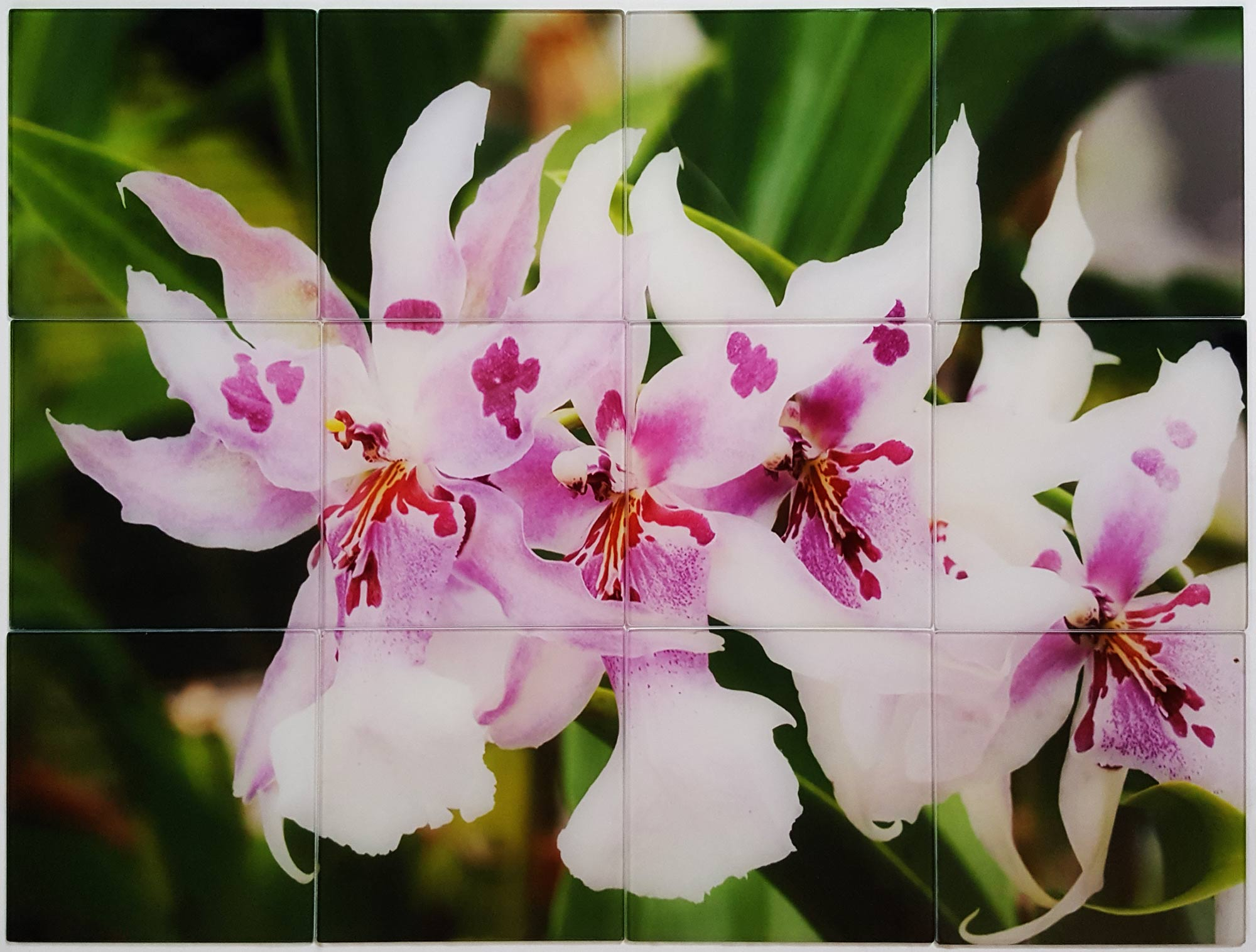 Flower Picture on Glass Custom Tile Kitchen Backsplash