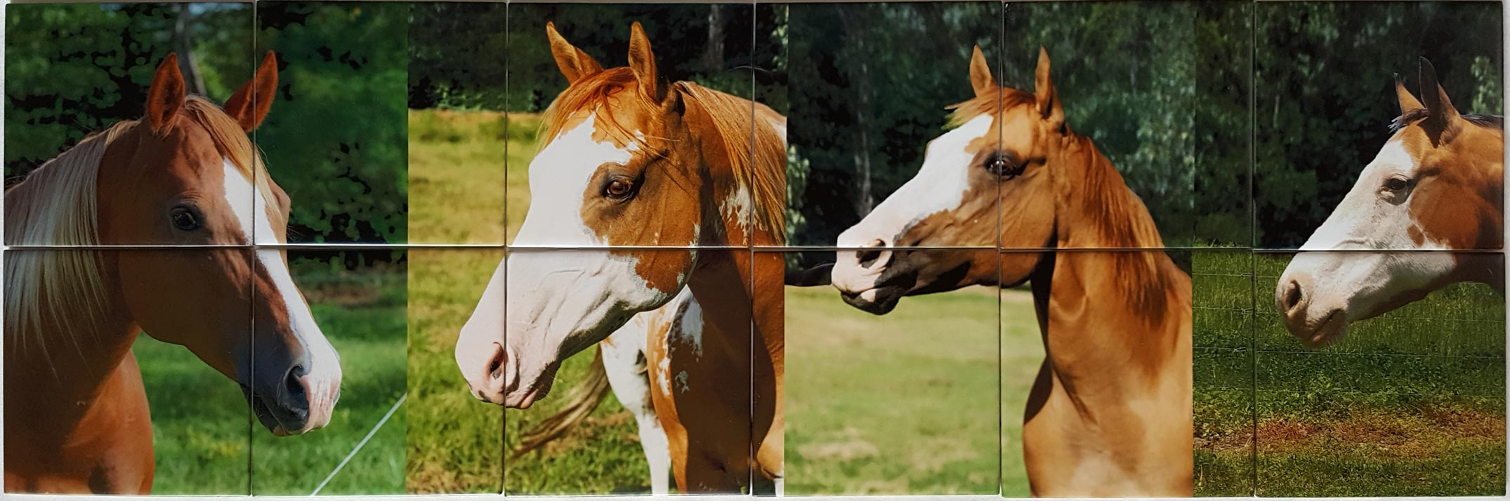 Four Horses Tile Picture Mural Backsplash