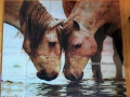 Glass Tile Two Horses Mural