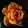 Yellow Rose Custom Ceramic Tile Mural Backsplash