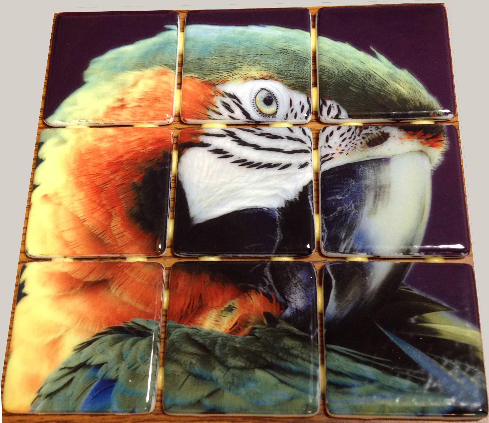 Custom glass tile mural 2 x2 glass mosaic tiles which a for Custom mosaic tile mural